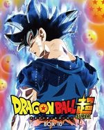 Dragon Ball Super 10 Série TV animée
