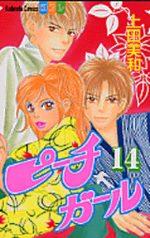 Peach Girl 14 Manga