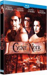 Le Cygne noir 1 Film