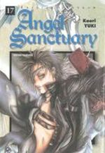 Angel Sanctuary 17