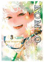 D.S.P Romeo 3 Manga