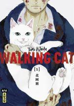Walking Cat 1