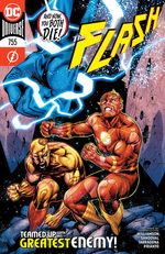Flash 755