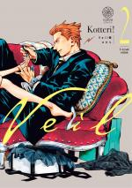 Veil T.2 Manga