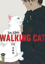Walking Cat 3