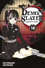 Demon slayer # 18