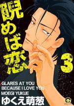 Glare at you, because I love you 3 Manga