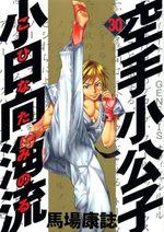 Karate Shokoshi - Kohinata Minoru 30 Manga