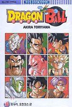 Dragon Ball 41