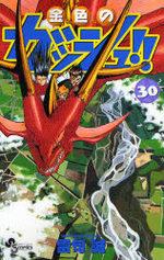 Zatch Bell 30 Manga