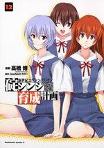 Evangelion - Plan de Complémentarité Shinji Ikari 12 Manga