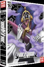 Bleach 16 Série TV animée