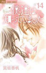 A Romantic Love Story 14 Manga