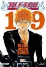 Bleach 19
