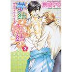 Yume Musubi Koi Musubi 3 Manga