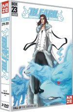 Bleach 23 Série TV animée