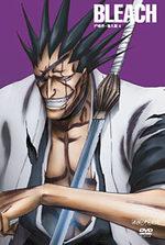 Bleach 9 Série TV animée