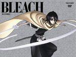 Bleach 37 Série TV animée