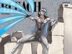 Bleach 40 Série TV animée