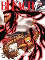 Bleach 65 Série TV animée