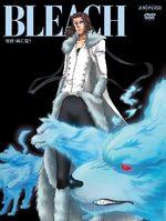 Bleach 69 Série TV animée