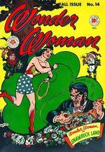 Wonder Woman # 14