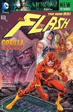 Flash # 13