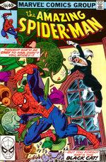 The Amazing Spider-Man 204