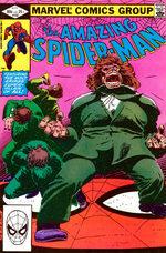 The Amazing Spider-Man 232
