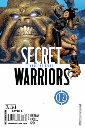 Secret Warriors # 12 Issues V1 (2009 - 2011)