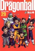 Dragon Ball #29