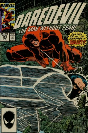 Daredevil # 250 Issues V1 (1964 - 1998)