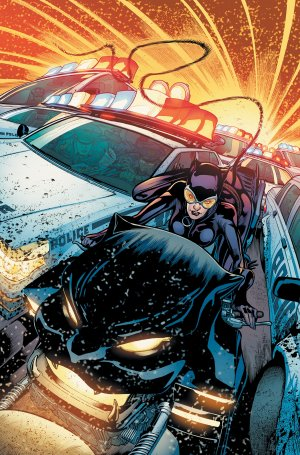 Catwoman # 17 Issues V4 (2011 - 2016)