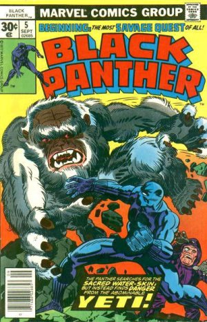 Black Panther # 5 Issues V1 (1977 - 1979)