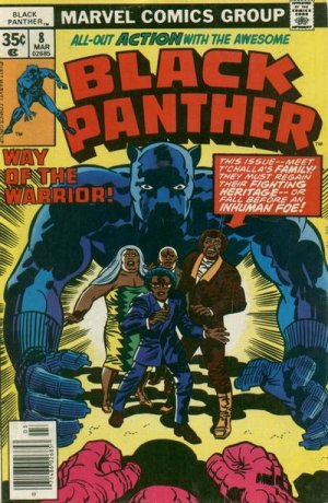 Black Panther # 8 Issues V1 (1977 - 1979)