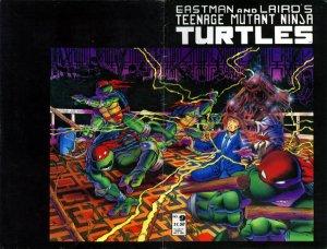 Les Tortues Ninja # 9 Issues V1 (1984 - 1993)