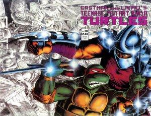 Les Tortues Ninja # 10 Issues V1 (1984 - 1993)