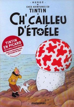 Tintin (Les aventures de) édition Picard
