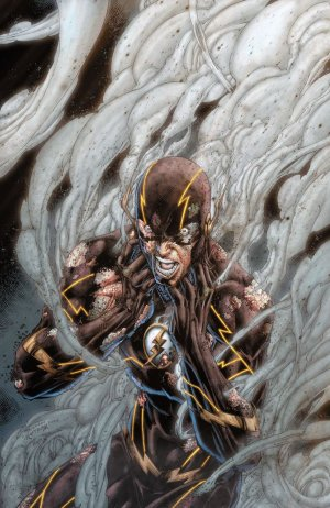 Flash # 31 Issues V4 (2011 - 2016) - The New 52
