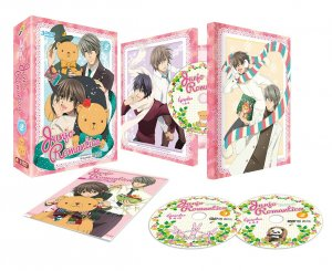 Junjou Romantica 2 - Pure romance 2- édition Simple