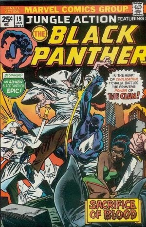 Black Panther # 19 Issues V2 (1972 - 1976)