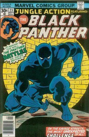 Black Panther # 23 Issues V2 (1972 - 1976)