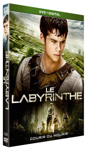 Le Labyrinthe édition Simple