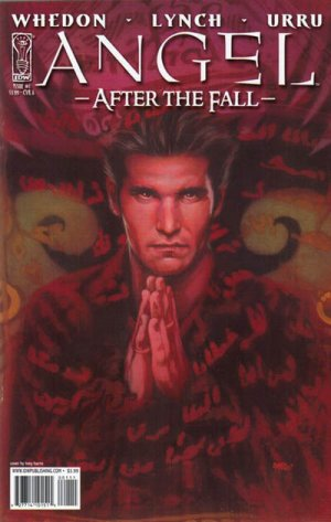 Angel - After the Fall édition Issues