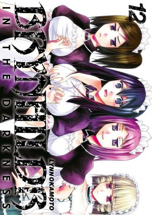 Brynhildr in the Darkness # 12