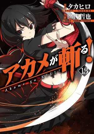 Red Eyes Sword - Akame ga Kill ! # 13