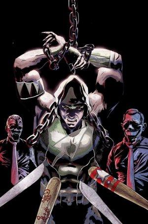 Green Arrow # 49 Issues V5 (2011 - 2016)