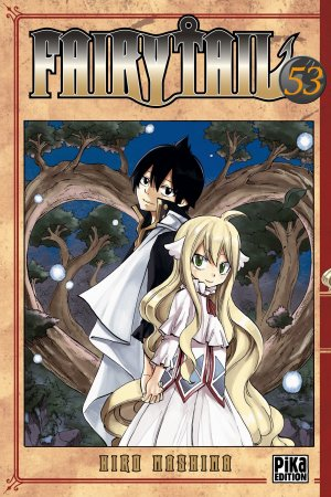 Fairy Tail T.53