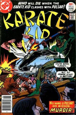 Karate Kid 8