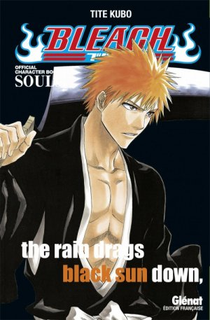 Bleach Official Character Book